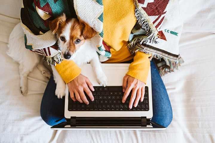 как зарабатывать сидя дома