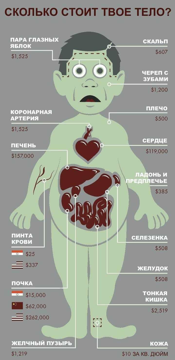 Цена человека
