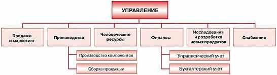 funkcionalnaja-organizacija