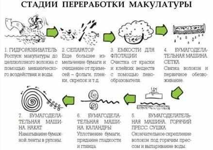 stadii-pererabotki-makulatury