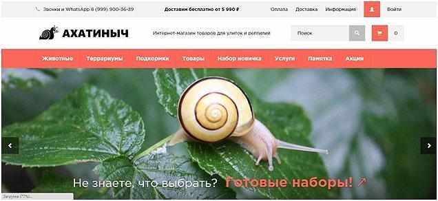 sajt-ahatinych-ru