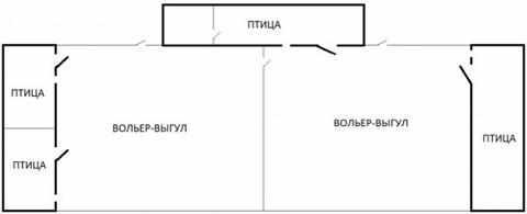 planirovka-ptichnika-1