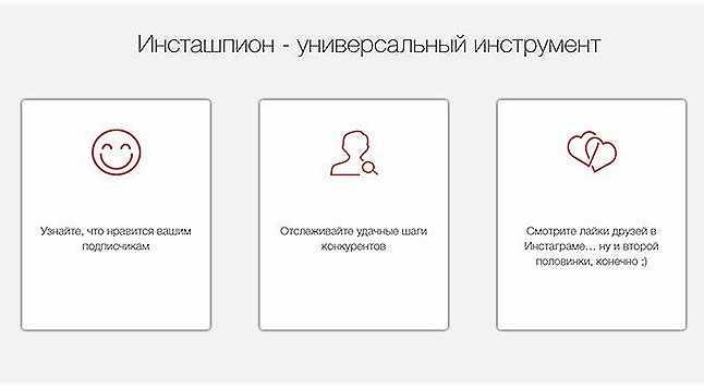 funkcija-sajta-Zengram-instashpion